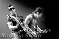 "Zacky Vengeance & Synyster Gates - Avenged Sevenfold (Rogério Stella) Tags: show california stella bw music white black rock metal branco tattoo portraits banda photography concert nikon focus photographer tour guitar gates song retrato live stage duo pair gig guitarra performance band preto most solo fallen portraiture hero idol instrument bible duel easy roger fotografia genesis venue instruments 2008 música metalcore zacky guitarist dupla biblical vivo harlot guitarrista palco duelo fotojornalismo vengeance ídolo avenged sevenfold apresentação mshadows synyster bíblia rogério documentação bíblico blackwhiteaward californiano documentarist ""photodocumentation"""