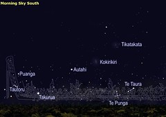 Māori Sternenbilder