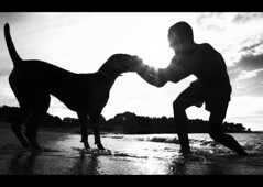siluetas (Boquiabierto) Tags: ocean sea summer espaa dog white black blanco beach mar spain negro playa perro galicia verano siluetas pontevedra vigo tuya