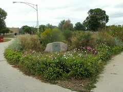 Triangle Park Nature Garden