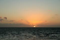 Sea sunset (eMMa_bOOm) Tags: sunset sea sun holland nature water dutch clouds landscape colours harlingen flockofbirds frysln waddensea vformation