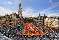 Carpet flower, Great Market, Brussels, Belgium (Batistini Gaston) Tags: brussels belgium belgique belgie bruxelles brussel blueribbonwinner batistini tapisdefleurs betterthangood gbatistini carpetflowers