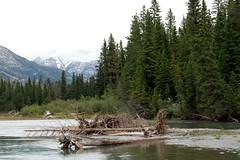Canadian Rockies-Banff (HBarrison) Tags: travel snow canada fishing travels alberta banff worldtravel canadianrockies cans2s harveybarrison hbarrison