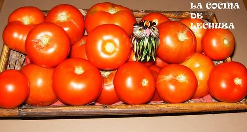 Tomates cesta