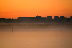 Old City Bay (Riku N) Tags: morning sea sky sun mist bird water silhouette fog sunrise buildings suomi finland dawn bay helsinki vanhankaupunginlahti cityscape calm poles meri vesi herttoniemi luonto arabianranta lammassaari