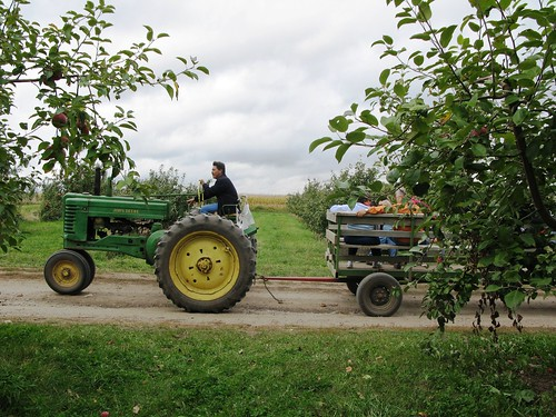2008_orchard_tractor