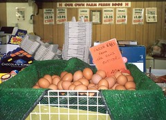 farm shop eggs