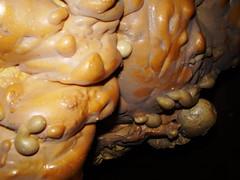 (bermarte) Tags: yellow flash foam sciencefiction bulles horrorvacui cume schiuma polvere bleargh vessie poliuretano vescica pseudoflittene poliluterano