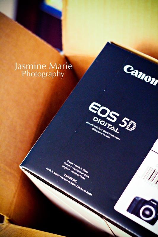 Canon5D01.jpg