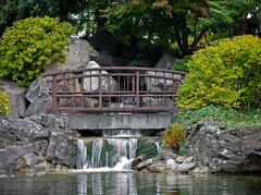 IMG_4262 (wolfnowl) Tags: bridge trees reflection water leaves rock garden concrete japanese waterfall pond stream colours waterlily bc britishcolumbia steel waterlilies kelowna lightroom kasugai