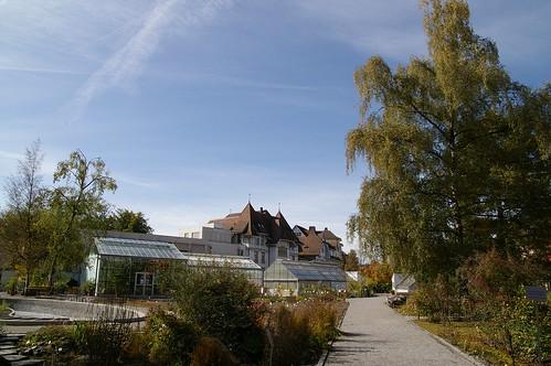 學校附近的花園