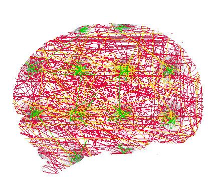 brain-regions