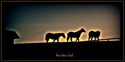 three ladies at dusk....