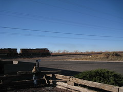 Arizona 649 (rosathorns) Tags: arizona route66 holbrook wigwammotel