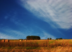 Cielos y campos de la pampa Argentina 16 / Skies and fields from Argentina\'s pampa 16 (320,000 visits, THANKS!!!!)