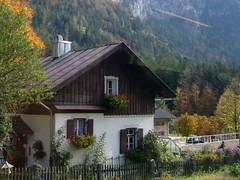 Herbst an der Bahnstrecke nach Berchtesgaden, Bayern. (bayernernst) Tags: autumn oktober fall berg germany bayern deutschland bavaria berchtesgaden europa europe herbst berge alpen 2008 coloured bunt gebirge bgl herbstlich berchtesgadenerland berchtesgadenland bayerischealpen 13102008 flickrblick derflickrblick