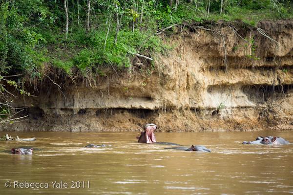 RYALE_Rwanda_Uganda_Safari-289