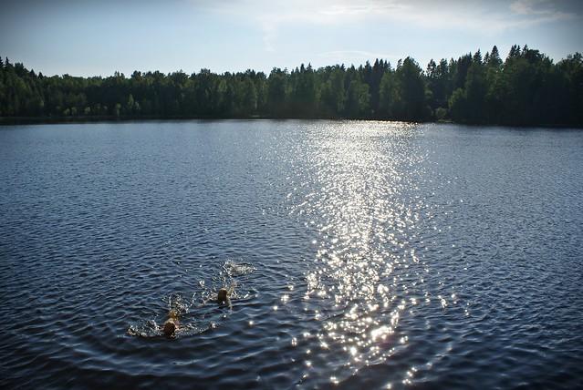 Kotojärvi '11 088 – Kopio