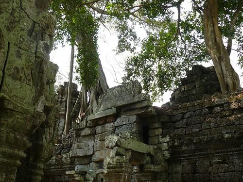 Cambodge - Angkor #84