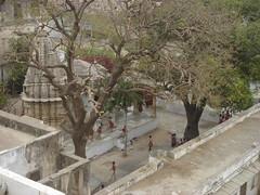school temple