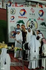(....* W6n *....) Tags: horses horse stallions 2008 stallion doha qatar      racingequestrianclub frenchshow hhtheemirofthestateofqatartrophiesswordfestival