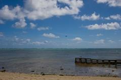 IMG_2564 (timothylhendrix) Tags: ocean beach clouds hawaii oahu kualoaregionalpark