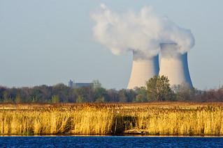 Nuclear Wetlands