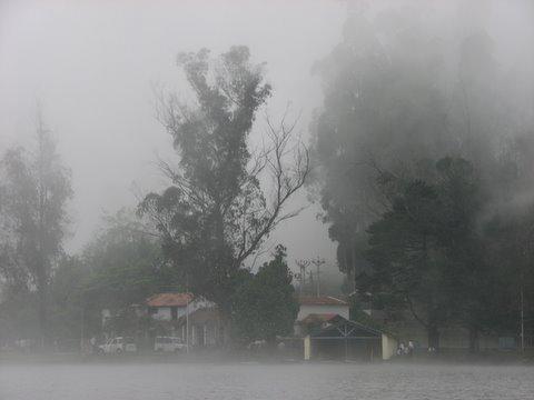 mist on the lake kodai 240508