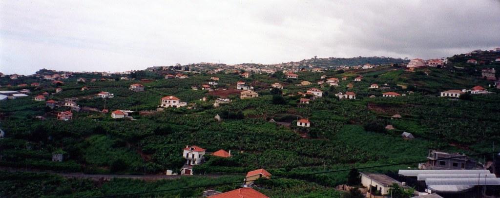 PanMadeira