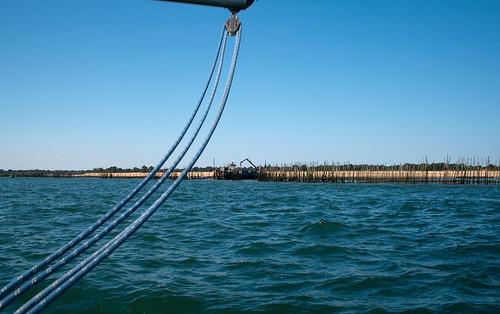 Courbure nautique