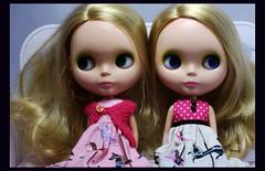 We're bored!  169/365 (rockymountainroz) Tags: twins mattie mondrian takara bl1 squeakymonkey mondie neoblythe dropdeadcute ablytheadaytakesboredomaway