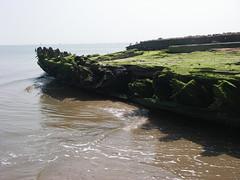 IMGP0184 (paulsyak) Tags: kayak lewes delawarebay beachplumislandshipwreck