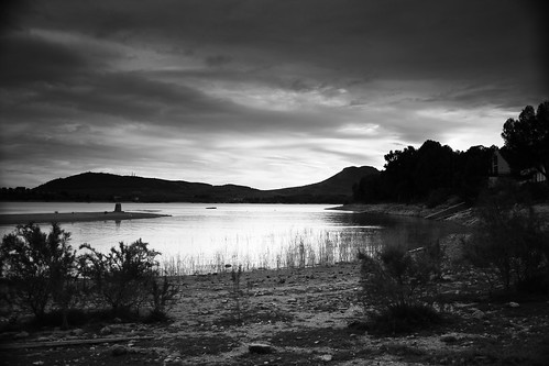 Black And White Lagoon