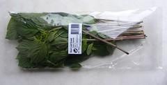 Thaise (zoete) basilicum