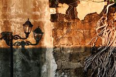 Of Shadows Large and Small (jeridaking) Tags: morning shadow orange sunlight color texture lamp yellow wall early asia southeastasia shadows post metro walk small philippines roots large solo shade short frame manila framing division ralph pinoy intramuros pilipinas luzon intramurals bisaya bisdak ormocanon jeridaking matres fortheloveofphotography leytephotographer ormocphotographer