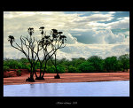 Oasis_by_BenHeine