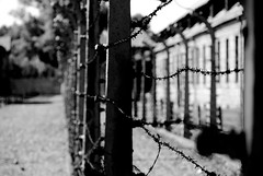 The Wires (TLW Photography) Tags: life camp blackandwhite bw white black fence germany dark photography death concentration holocaust pain scary wire nikon dof place fences poland polska explore prison human german rights memory jail horror jew jewish strong jews misery dslr stark humanrights 169 auschwitz commission powerful painful 107 tlw fright birkenau concentrationcamp distant auchwitz bestshot deaths lifeless tomasz drastic aushwitz wasik solem interamerican exploreseptember nikond40x auszwitz exploreseptember9 tlwphotography tomaszwasik iachr interamericancommissiononhumanrights