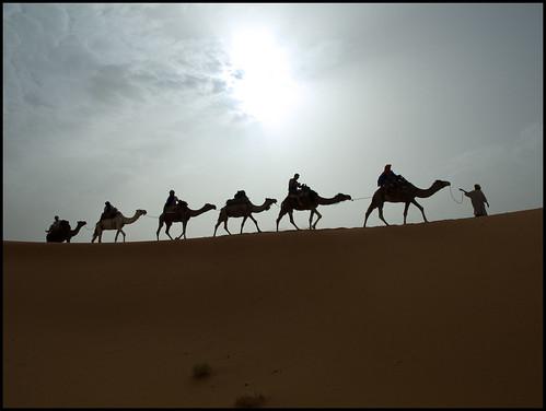 Marruecos / Morocco 2008