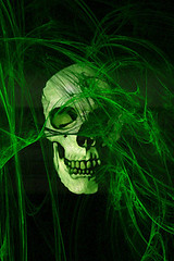 Green skull for iphone and ipod