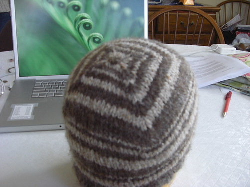 RI Spinners Guild Challenge Hat