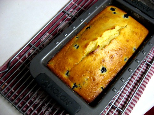 """Dad-approved"" Blueberry Lemon Loaf - Cool in the pan"