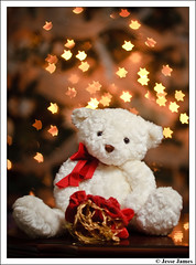 Christmas Bokeh (Jesse James Photography) Tags: bear christmas xmas stars nikon bokeh christmastree christmaslights teddybear stuffedanimal present stuffedbear adobelightroom christmasbokeh nikond300 starrybokeh