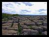 malham (redrose100) Tags: summer nature countryside walk malham yorkshiredales canonixus430 limestonesteps scardalegorge