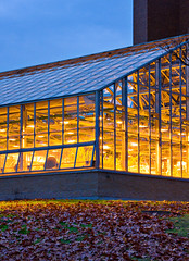 Greenhouse  ::  Cornell University (Pat Kilkenny) Tags: november blue light yellow canon warm greenhouse cornell growing 2008 cornelluniversity canon40d patkilkenny