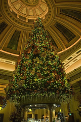 Christmas Tree inside The Dome, George St, Edinburgh