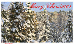 Merry Christmas (Thomas Michel) Tags: christmas winter friends wow archive merry 0sec hpexif anawesomeshot thomasmichel