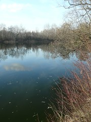 LAKE IN DECEMBER (Chandra Siri) Tags: blue trees sky lake nature water leaves reflections season seasons lakes changing walkinginbeauty skyascanvas whatwedoatlunchhour