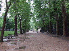 Paris_Jardin_Luxembourg_(17) (Paris 06 Luxembourg, Île-de-France, France) Photo