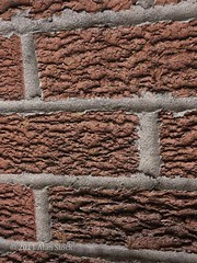 Bumpy Wall (Jigsawn) Tags: shadow red brick texture lines wall manchester bricks bumpy textured ridges rectangles didsbury