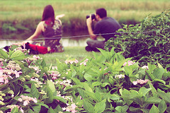 ( ~ ) Tags: pink flowers red green love netherlands rose canon 50mm flickr bokeh